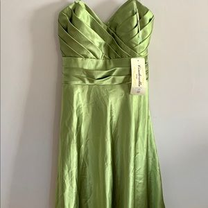 Cinderella Design Medium Gown Strapless Green